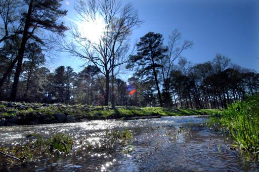 Rae's Creek - History runs through it